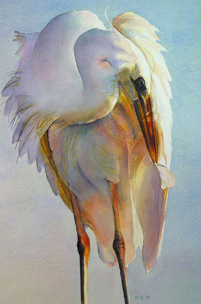 preening egret I watercolor thumbnail