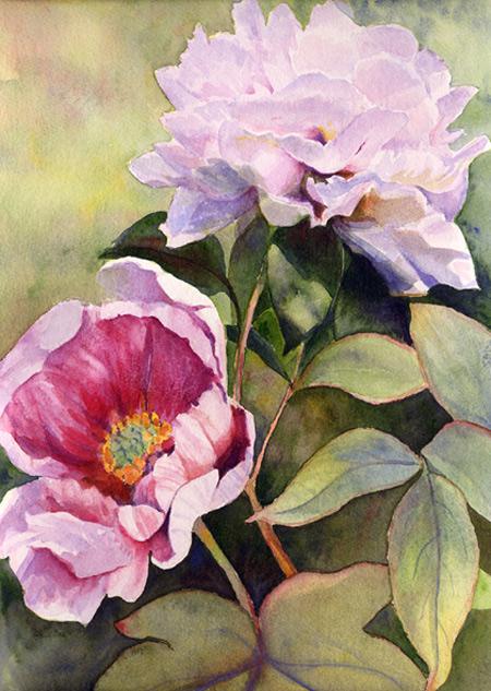 watercolor of peonies