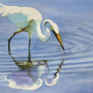 watercolor of wading egret