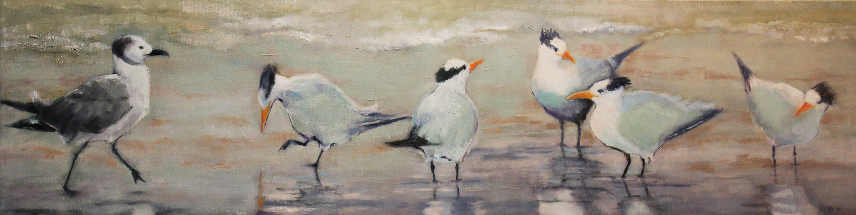 Terns and one Seagull - the interloper described on my blog